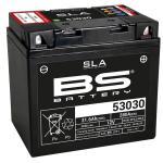 Batterie BS Battery SLA 53030 ferme Type Acide Sans entretien/prête à l'emploi